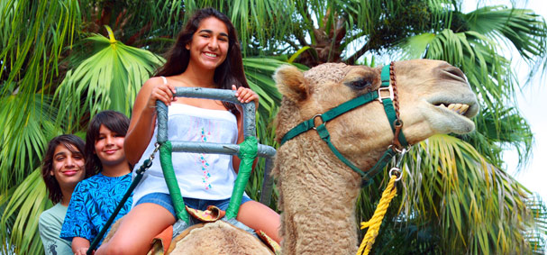 A canel ride is a unique experience you and your kids can do at Zoo Miami.