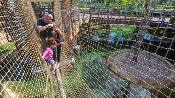 A small rope bridge will enterrain the whole family at Zoo Miami.
